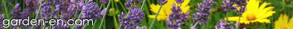 Garden-en.com