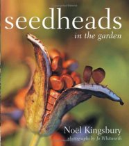 Seedheads in the Garden