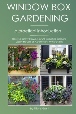 Window Box Gardening