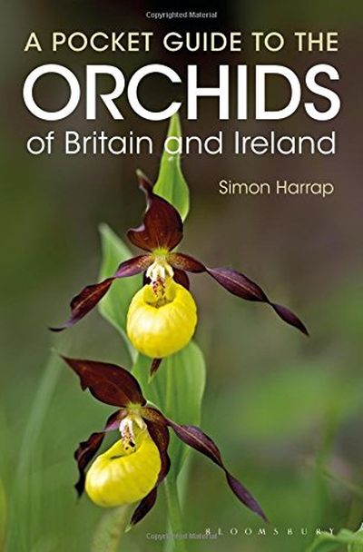 Pocket Guide to the Orchids of Britain and Ireland: 8858